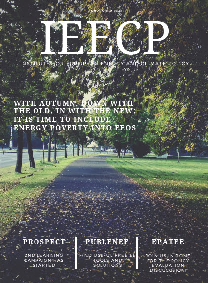 IEECP newsletter November 2018