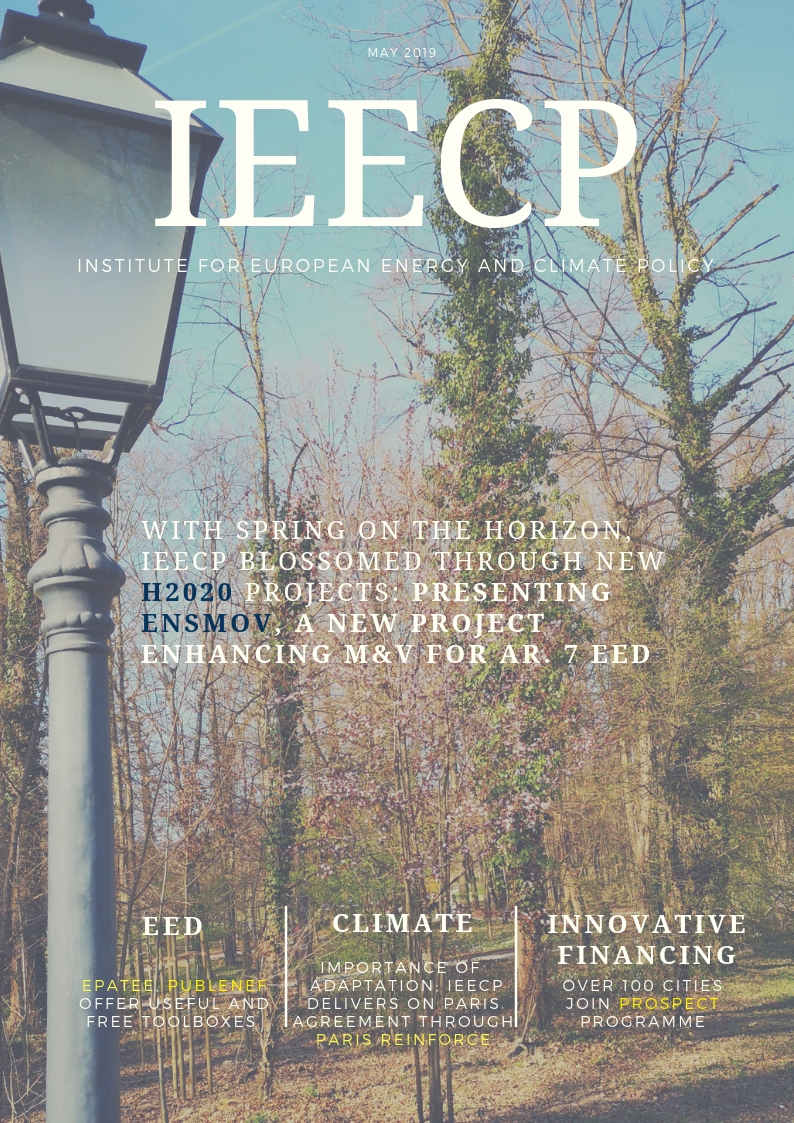 IEECP newsletter May 2019